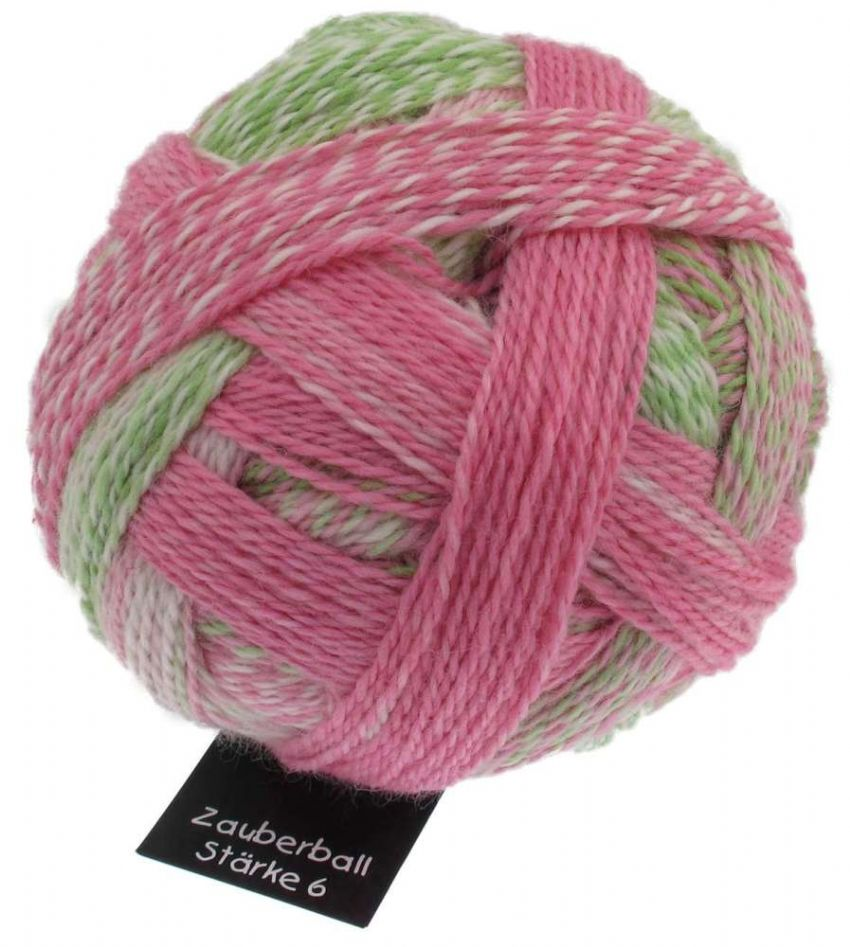 Schoppel-Wolle ZAUBERBALL 6-ply Floral Language 2079